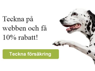 Agria självrisk hund